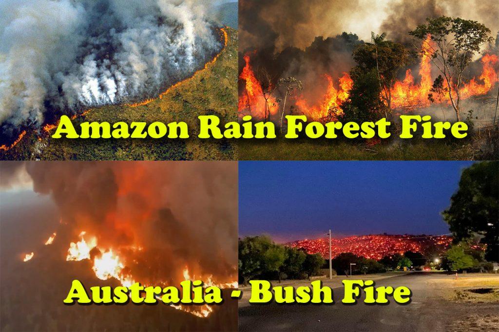 Amazon - Bush Fire