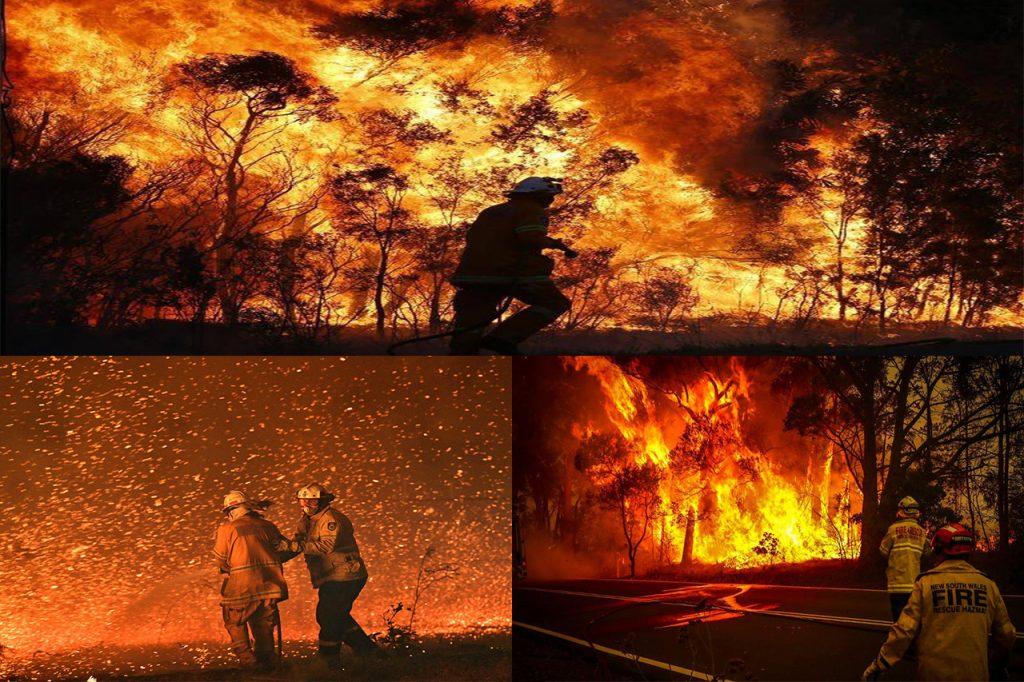 Fire Fighters - Bush Fire