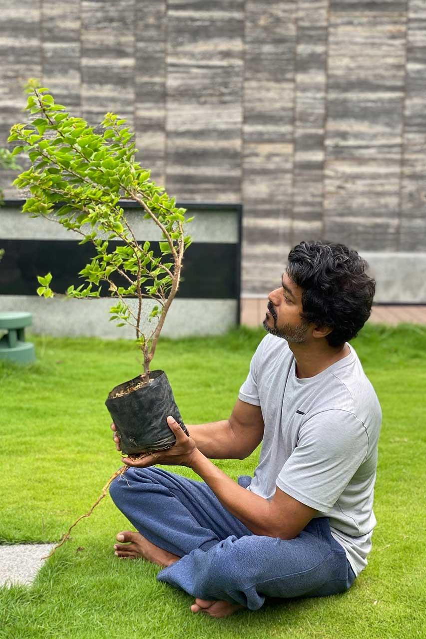 Thalapathy Vijay